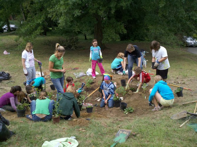 Alexandria Girl Scout Troop 4143 tried to protect bee populations by creating a pollinator garden.