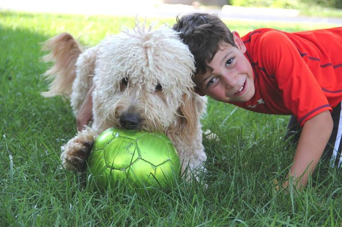 VIENNA — Darby, a 2-year-old Goldendoodle, with Ryan Odell age seven.