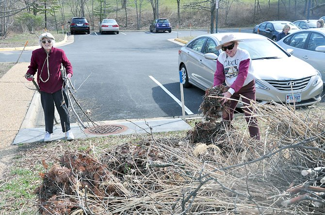 From left, Reston Garden Club members Nancy Davis and Barbara Pelzner clean up brush and other landscape debris outside the Reston Library Wednesday, March 7.