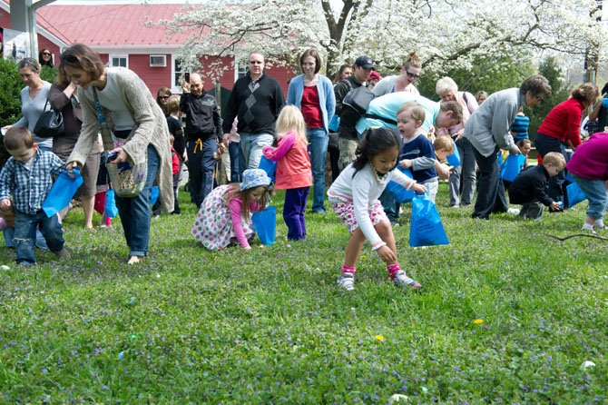 It took these toddlers and preschoolers seven minutes to clear a large field of hundreds of eggs at the town of Clifton's annual Easter Egg Hunt on March 31.
