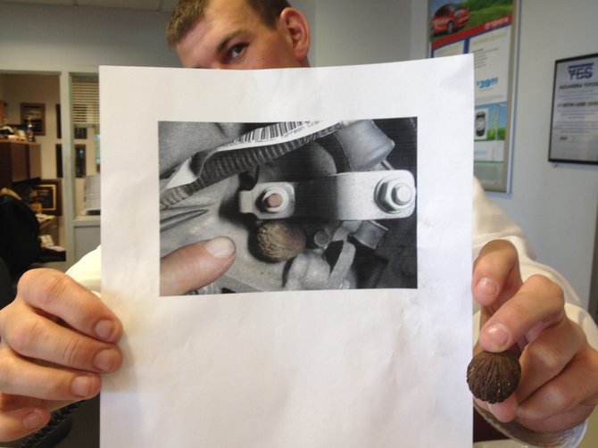 Jason Baker of Alexandria Toyota holds the problem hickory nut next to a photo of it wedged into the transmission.