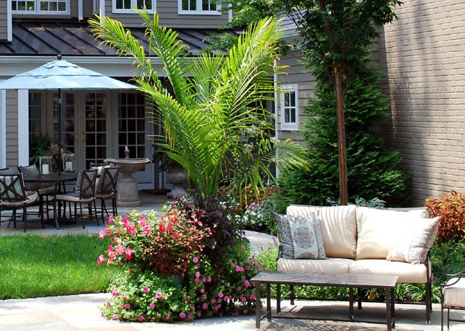 When designing this patio in Alexandria, landscape architect Stephen Wlodarczyk of Botanical Decorators incorporates flowers in bursts of color to create a striking, contemporary space.