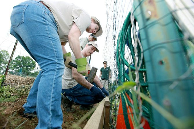 Haynes Whaley Associates' eight-person team made repairs to the connecting pathway between the garden plots.
