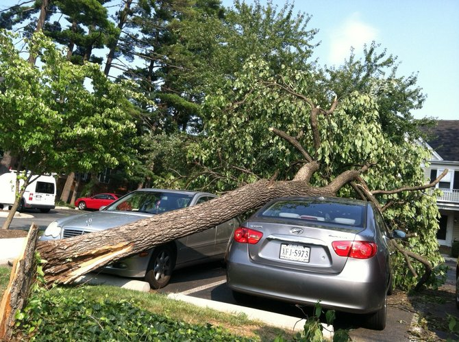 Parked cars crushed by trees in Oakton, Va.