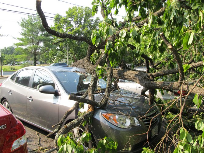 Two cars parked in a townhouse development on Route 123 in Oakton were smashed by a tree uprooted by high winds and lightening during a wave of violent storms that struck the area Friday, June 29.
