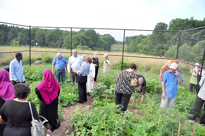Gardeners show off the newest community garden plot on Reston, at the Cedar Ridge Apartments, Wednesday, July 11.