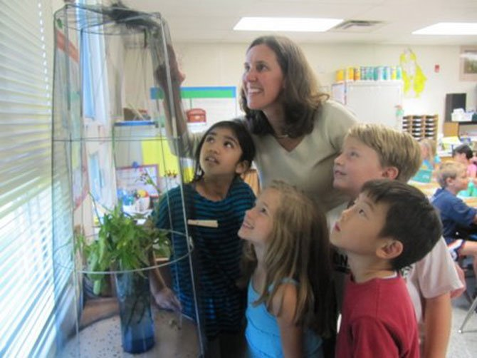 Churchill Road second graders Avani Ranka, Caitlin Kry, Joe Foley and Sesshu Yamazaki, along with their teacher, Cheryl Bamdad, observe their classroom's new monarch chrysalis.