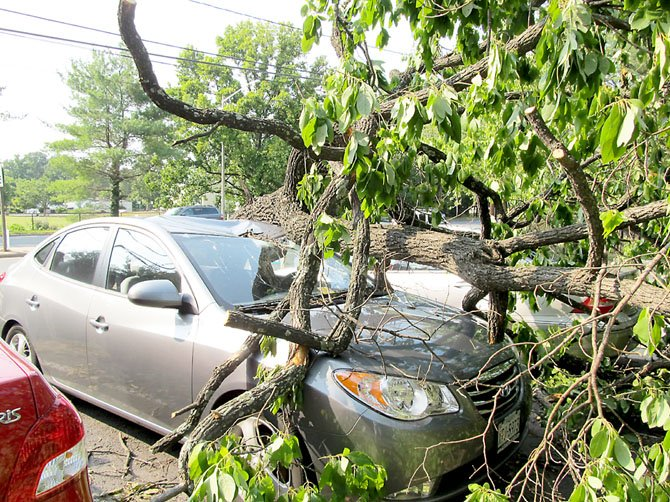A tree smashed into a parked car on Rt. 123 in Oakton after it was uprooted by the June 29 derecho storm. The wave of violent thunderstorms slammed the region this summer, packing hurricane-force winds that uprooted trees, downed power lines and knocked out power to more than 1 million homes.