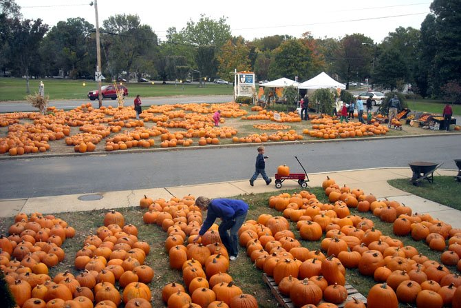 The 19th Annual Pumpkin Sale at Immanuel Church-on-the-Hill, 3606 Seminary Road raises funds Oct. 7-31, 10 a.m.-8 p.m. daily, to benefit many of Alexandria's charities such as ALIVE, Carpenter's Shelter, Community Lodgings, and the Northern Virginia AIDS Ministry (NOVAM). International charities include the Heifer Project and the Haiti Micah Project. The pumpkins are grown on the Navajo Indian Reservation in New Mexico and are distributed and consigned to Immanuel and over 1,300 other churches of various denominations throughout the country.  These partnerships support over 300 jobs on the reservation and the programs of participating churches nationwide. Autumn crafts and cookies, brownies, cake, candy, hearty soups, gourds, mini pumpkins, apple crisps, Indian corn and cornstalks are also available.