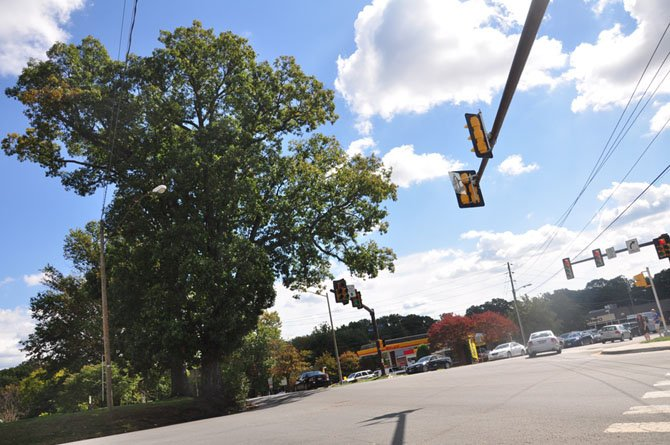 The trees located at the corner of Georgetown Pike and Walker Road, scheduled to be removed starting Oct. 1, will be evaluated by a community arborist before a final decision is made.
