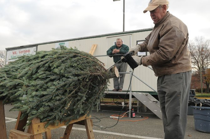 Chair of the annual Mount Vernon Kiwanis Christmas Tree sale Paul Mehler watches as Dick Peterson trims the base of an 8-foot Frasier fir tree.