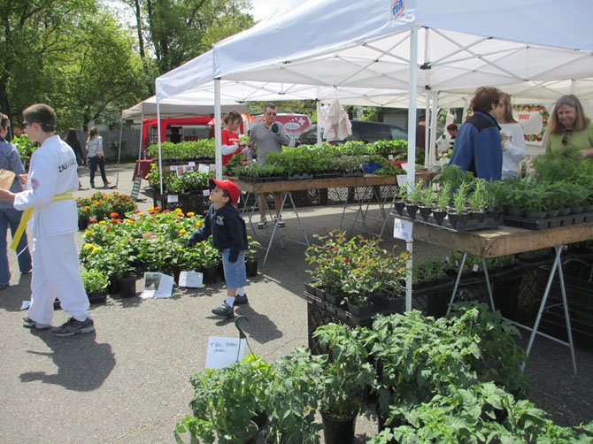 "The farmers market featured an abundance of colorful flowers, herb and berry plants and early-spring produce. Kale appeared to be ""big"" this year."