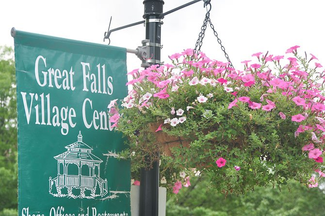 Seventy flower baskets, containing four colors of double wave petunias, have been placed around the Great Falls business areas.