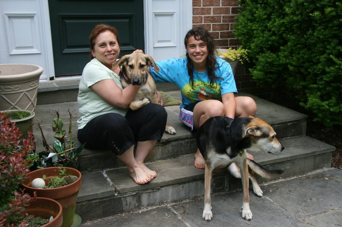 Magnolia and Fido: Barbara and Hannah Rudin with their two mixed-breed, rescued dogs, Magnolia (2 years old), and Fido (13 years old). The group is pictured on the front step of their Vienna home, where the dos enjoy chasing the abundant wildlife that show up in their yard. Both dogs were adopted from shelters.