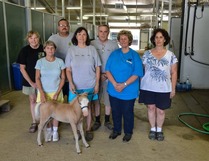 The club officers of the Old Dominion Miniature Horse Club at Frying Pan Farm Park in Herndon.