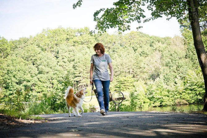 Kim Waite-Williams and Teddy take a walk.