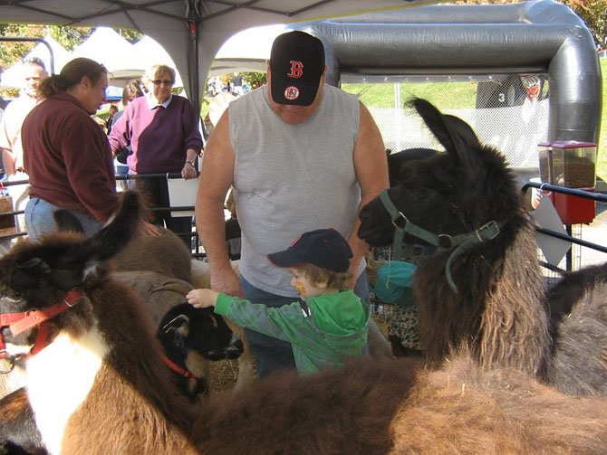Children enjoy a petting zoo at the Festival on the Square.