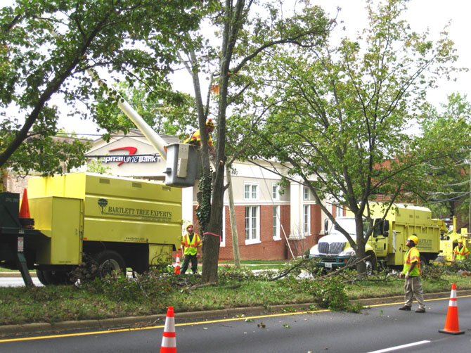 The Bartlett crew removes a dying Bradford pear tree from the Dolley Madison Boulevard median in McLean.