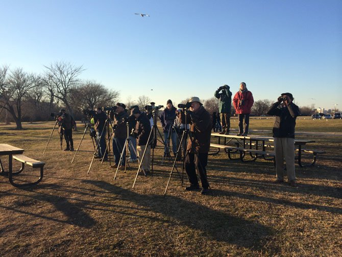 Bird watchers and photographers line up Thursday, Jan. 16, at Gravelly Point Park in Arlington waiting and hoping for a glimpse of two rare Snowy Owls that have taken up residence at Reagan National Airport.