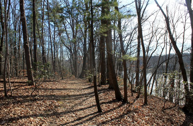 For some winter fun in the South County area, bundle up and try a trail, such as this one at Occoquan Regional Park.