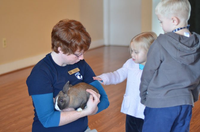 Frying Pan Farm Park employee Catherine Vaughan shows Mandy, the farm's pet rabbit during the information session at the park's visitor center on Groundhog Day.