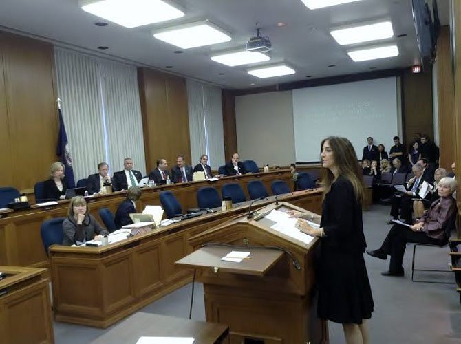 Delegate Eileen Filler-Corn speaks in a committee in Richmond. Filler-Corn said Medicaid expansion, ethics reform, and education continue to be important issues in the 41st district.