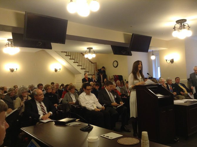 Delegate Eileen Filler-Corn presenting legislation during the 2014 General Assembly Session.
