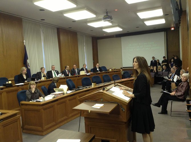 Del. Eileen Filler-Corn (D-41) speaks before a House Committee on the importance of new concussion legislation.