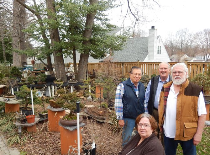 Standing near some bonsai in Chuck Croft's yard in Burke are (from left) Joe Gutierrez, Gary Reese and Chuck Croft with Judi Schwartz (seated).