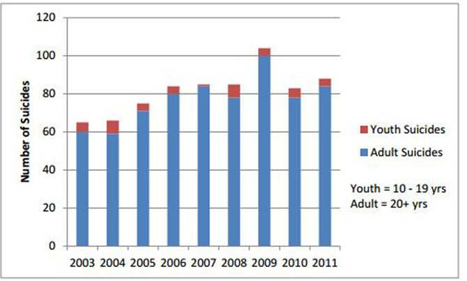 The suicide rate in Fairfax County from 2003 to 2011: 735 people died in total, the report said. CSB's Online Youth Suicide Prevention Training is working to help adults recognize signs of psychological distress in youth to prevent suicide.