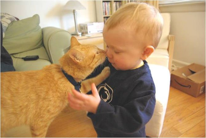 The Baby Ready Pets classes offered by the Animal Welfare League of Arlington help pet owners and future parents prepare their pets for welcoming a new baby into the home.