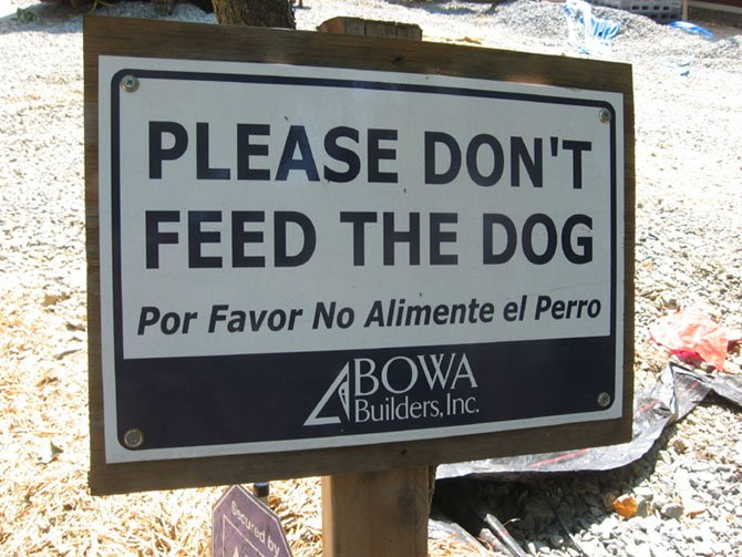 During a construction project, homeowners should keep pets away from the construction site.