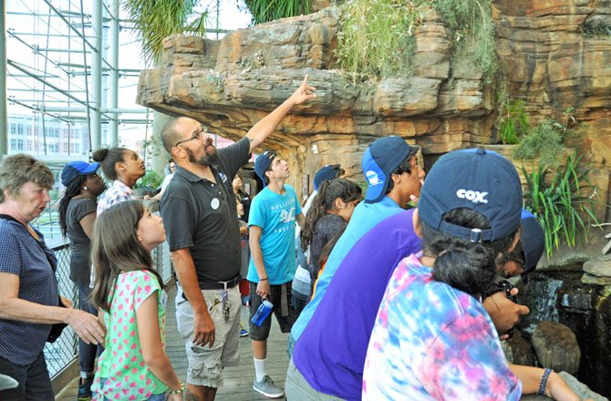 Alan McKenzie, the Baltimore Aquarium guide for the event, leads a group through the Australia exhibit, including Boys and Girls Club members Sandra Achia, Hanny Bushura, Paola Zavala, Edwin Garcia, Eliseo Valenzuela and Mercy Grace Francisco.