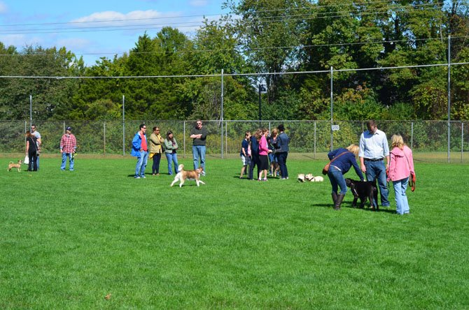 In addition to a variety of vendors, the Oct. 5 HernDOG Bark Bash at Bready Park in Herndon included an off leash area. The event was free and open to the public.
