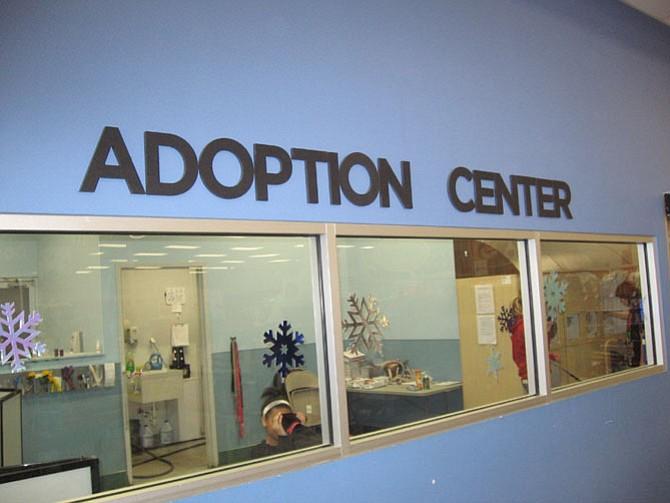 Image result for petco adoption center photos