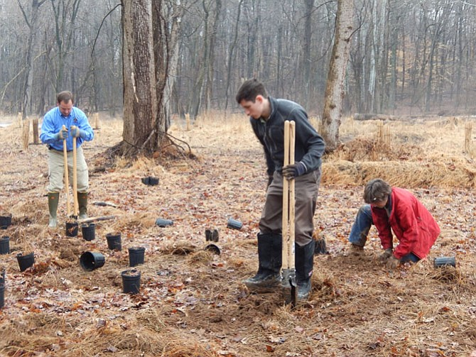 Hard at work planting are (from left) Matt Meyers, Joe Riley-Ryan and Suzy Foster, all with DPWES, Stormwater.