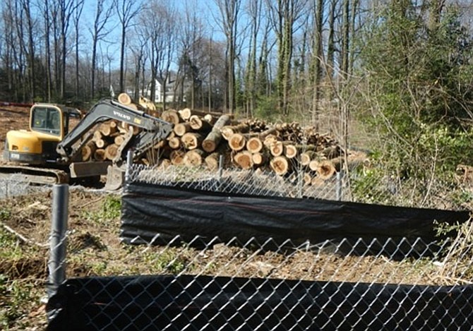A mature holly tree was the only tree saved in the interior of this lot on Balls Hill Road in McLean, but the builder complied with county regulations by preserving the trees on the edges of the lot.