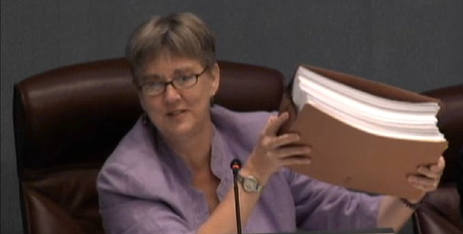 County Board Chair Mary Hynes holds a stack of letters from the public on the Affordable Housing Master Plan.