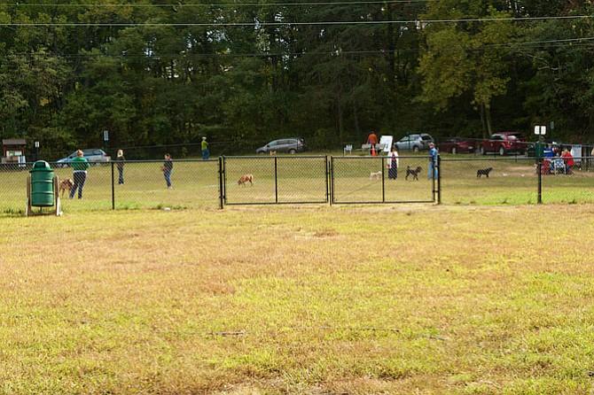 Dog Park Fairfax Ca