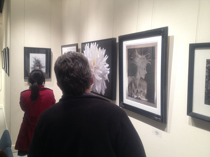 Photographers from all around Northern Virginia participated in the 2016 Fine Art Photography competition.