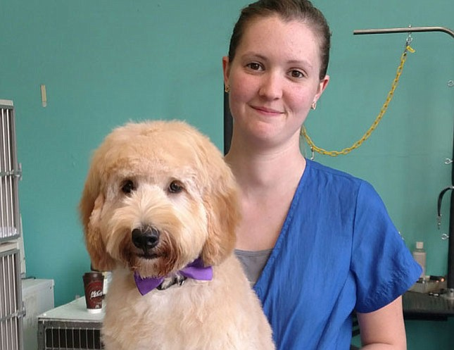 Elaine Lewis enjoyed giving this puppy his first haircut.