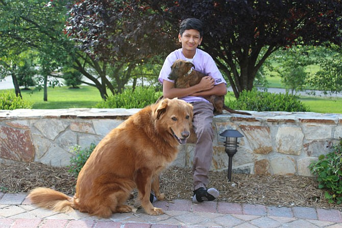 Sachin Muralidhar, vet intern and animal rescue volunteer, with WTAR foster pup (Delta) and adopted rescue (Sparky).