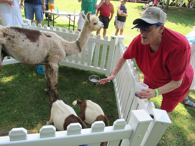 Those attending Potomac Community Resource's annual barbeque enjoyed animals from Squeals on Wheels.
