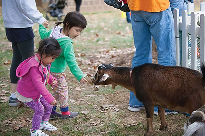 Squeals on Wheels Traveling Petting Zoo will have a variety of farm animals on display giving children a hands-on educational experience.