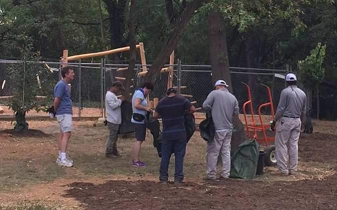 Volunteers plant trees at Taney Avenue Park as part of the Sept. 17 RunningBrooke Volunteer Day.