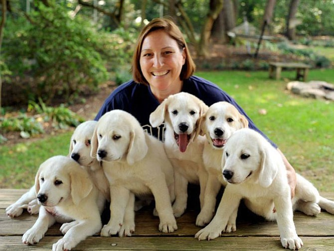 Liz DiFrancisco is of the mind that you can't have too many foster dogs in your heart and home. She focuses on Great Pyrenees rescue.