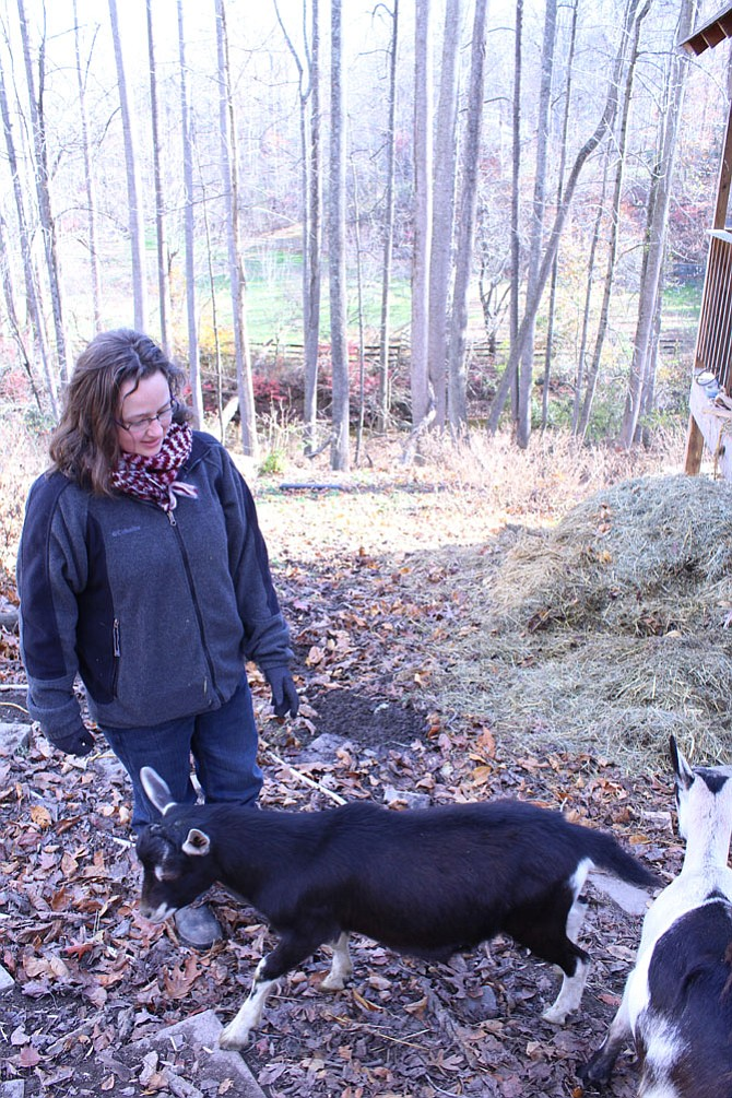 Sarah Wehri lets her goats out of the fenced-in pasture on her farm last fall.