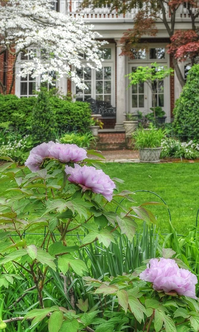 Old Town Prepares For Historic Garden Week