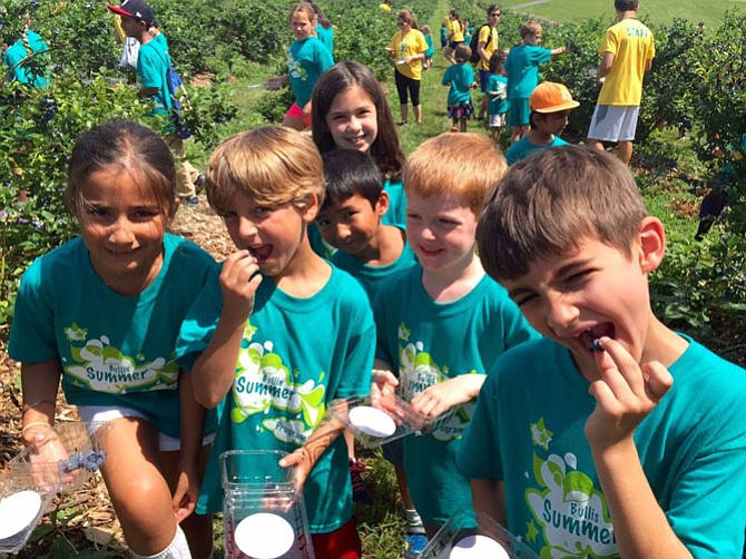 Campers such as those at Bullis Summer Programs in Potomac, Md., gain life skills through summer camp experiences.