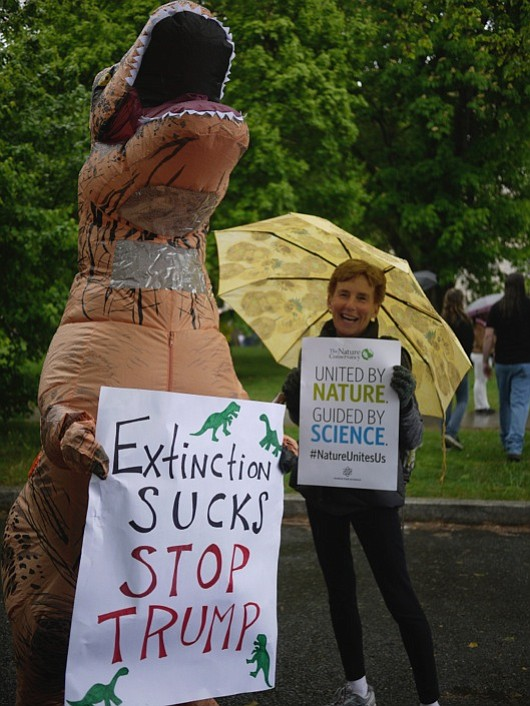 """Jamie Usrey of Arlington stands next to one of the many creatures wandering the mall on Saturday, April 22, to march for science. """"Polar bears"""" and """"gorillas"""" were seen protesting policies which could lead to their extinction."""